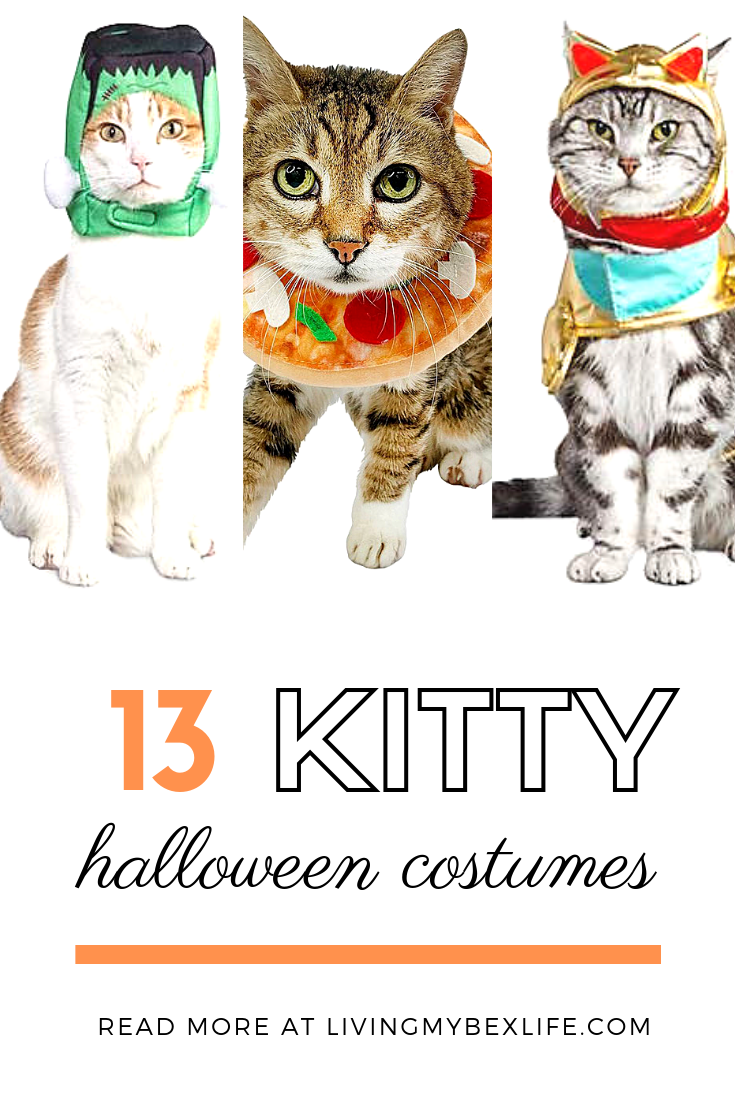 13 Hilariously Cute Halloween Cat Costumes